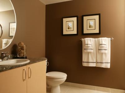 Chocolate Brown Bathroom Wall