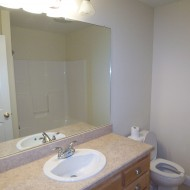 Surviving Staged Bathrooms