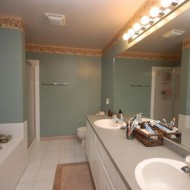Placeholder Redesign: Master Bathroom