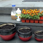 The Secret to Healthy Plants: Organic Fertilizer