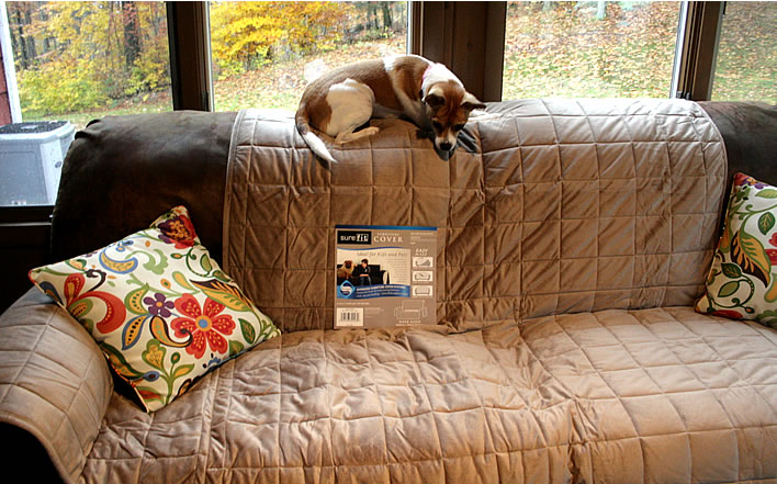 surefit sofa pet cover - How I Puppy Playdate Tested A SureFIT Sofa Cover